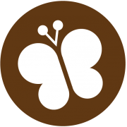 GTT Biodiversidade e serviços dos ecossistemas